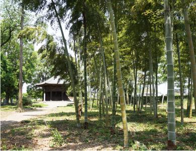 竹林の先に市指定文化財の六角堂