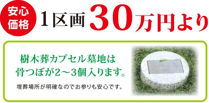 安心価格。1区画30万円より。樹木葬カプセル墓地は骨つぼが2〜3個入ります。埋葬場所が明確なのでお参りも安心です。